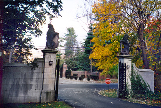 Cement gate and driveway